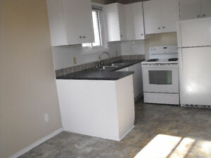 3 bedroom upper level apt. avail. June 1 - $1,075/mth