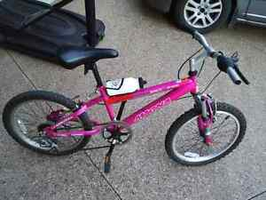 "6 speed 20"" girl's bike Cambridge Kitchener Area image 1"