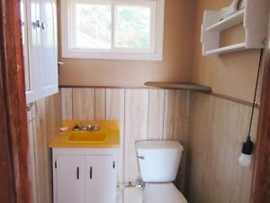 Cabin on Country Pond Road in Bay Roberts - MLS 1135752 St. John's Newfoundland image 7