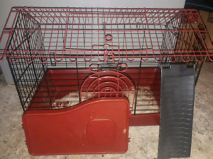 2 pet rats with cage
