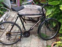Mans mountain bike 15 gears
