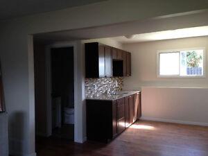 2 bdrm 1 bath basement suite with backyard space