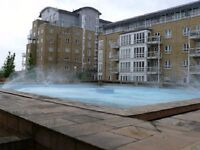 **double room to rent flat share apartment in st David square **