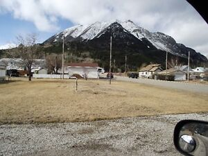 Corner lot in beautiful Crowsnest Pass