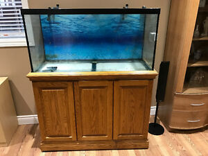 90 gal fish tank and stand