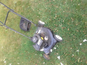 Poulan lawnmower, Briggs and Stratton Motor