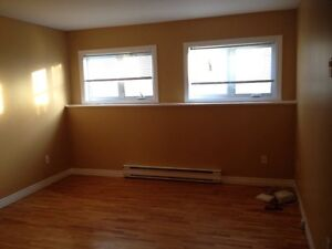 2 Bedroom Basement Apartment for rent in Mt Pearl