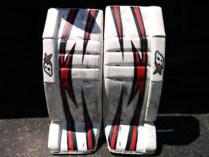 Brian's 33+1 goalie pads and gloves
