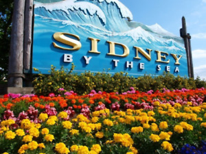 Looking to  Rent in Sidney by the Sea !!