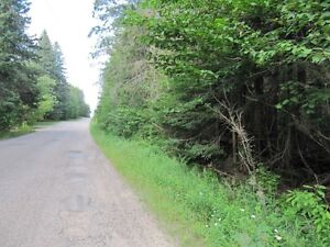 100 ACRES ON YEAR ROUND ROAD