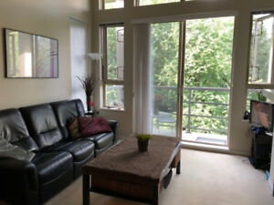 $950 - Fully Furnished Condo Unit In Harmony in Univercity, SFU