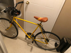 1970's vintage American 2 speed bicycle