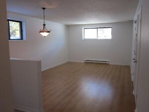 Hautes Plaines..Tranquille   Very clean and quiet Gatineau Ottawa / Gatineau Area image 6