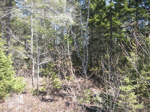 Cottage Country - Great lot for sale - quick walk to lake access