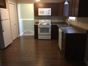 New 2 Bed Apt - Clean, Quiet, Washer & Dryer and Snowblower