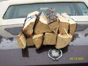 ARMLOADS of FIREPIT FIREWOOD Free delivery orders over $60