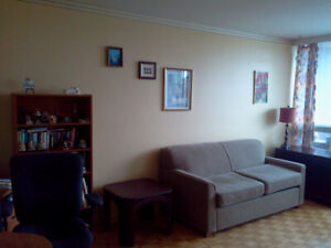 Fully Furnished 1 bedroom apartment ( May- Sept) Mooney's Bay