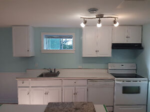 Large Basement Apartment in the Woodlawn Area