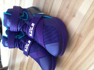 Lebron Soldier 9's