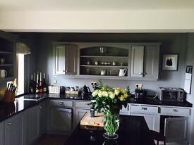 Professional painter and decorator,plasterer,roofing,gutter installer.