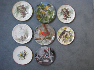 Collectible decorative plates featuring song birds