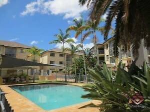 ID 3852486 - Modern Large 3 Bedroom Furnished Apartment. St Lucia Brisbane South West Preview