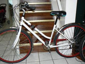 SPEEDY SLEEK Large ROAD Bike- RoadMaster - Upto 5 Feet 10 In