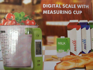digital industrial weighing scale, counting scale, floor scale