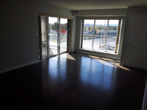 Furnished 2-Bdrm Executive Condo - Downtown Marina - Short Term