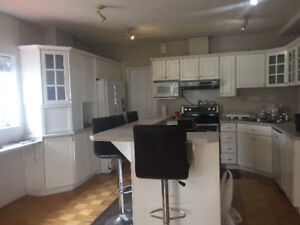 Room/Apartment for rent