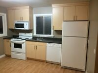 Fully Renovated House & 2 Car Garage!