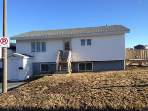 3 Bedroom Basement Apartment in Mount Pearl