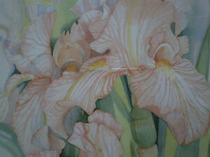 "Mary Dawn Roberts "" Velvet Petals "" Limited Edition Print Kitchener / Waterloo Kitchener Area image 6"