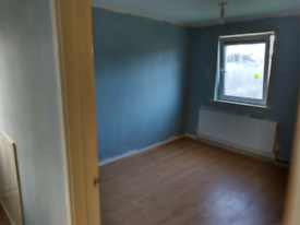 Painter decorator ten to yes experience
