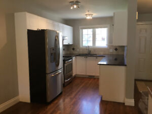 Eau Claire Townhome, 3 bedrooms, 4 bath, full patio and pets ok!