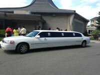 All white 10 Passengers Limousine