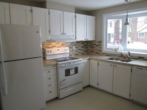 Beautiful 3 bedroom Townhouse in Orleans