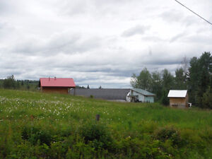 80 Acre Farm with 2 houses greenhouse barn and much more