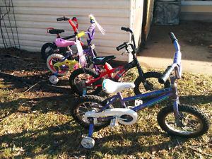 Girls and Boys 12 and 14 inch Bikes