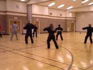 Do YOU qualify for FREE Martial Arts Classes??? Kitchener / Waterloo Kitchener Area image 9