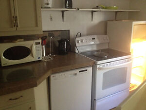 AVAILABLE JAN 1 Furnished 2 BR in character home near Old Campus Regina Regina Area image 4