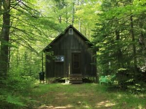 Looking for a home, cabin /rental. Handy, responsible tenant.
