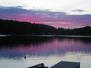 Cottage for SALE on the FRENCH RIVER