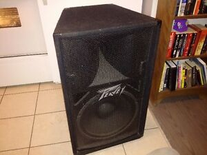 "Peavey 15"" 2way monitor with spair 15"" Driver"