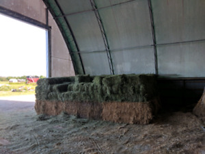 Small squares bales - quality horse hay