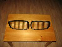 Kidney grille pair