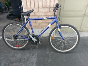 26 in Bikes