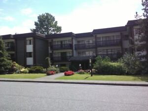 $1517 1 bedroom available         Febuary 1