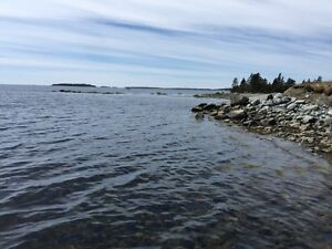 1050 Acres of Oceanfront tranquility. 2000 feet of Waterfront.