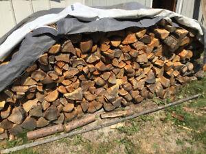 Dry firewood - Fir cords
